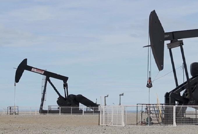 petroleo saul ameliach
